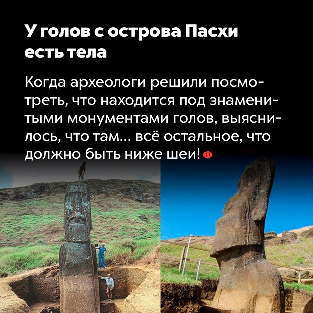 У голов с острова Пасхи  есть тела.