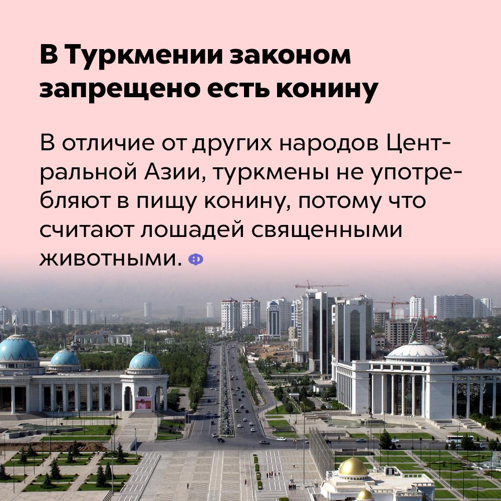 В Туркмении законом запрещено есть конину.