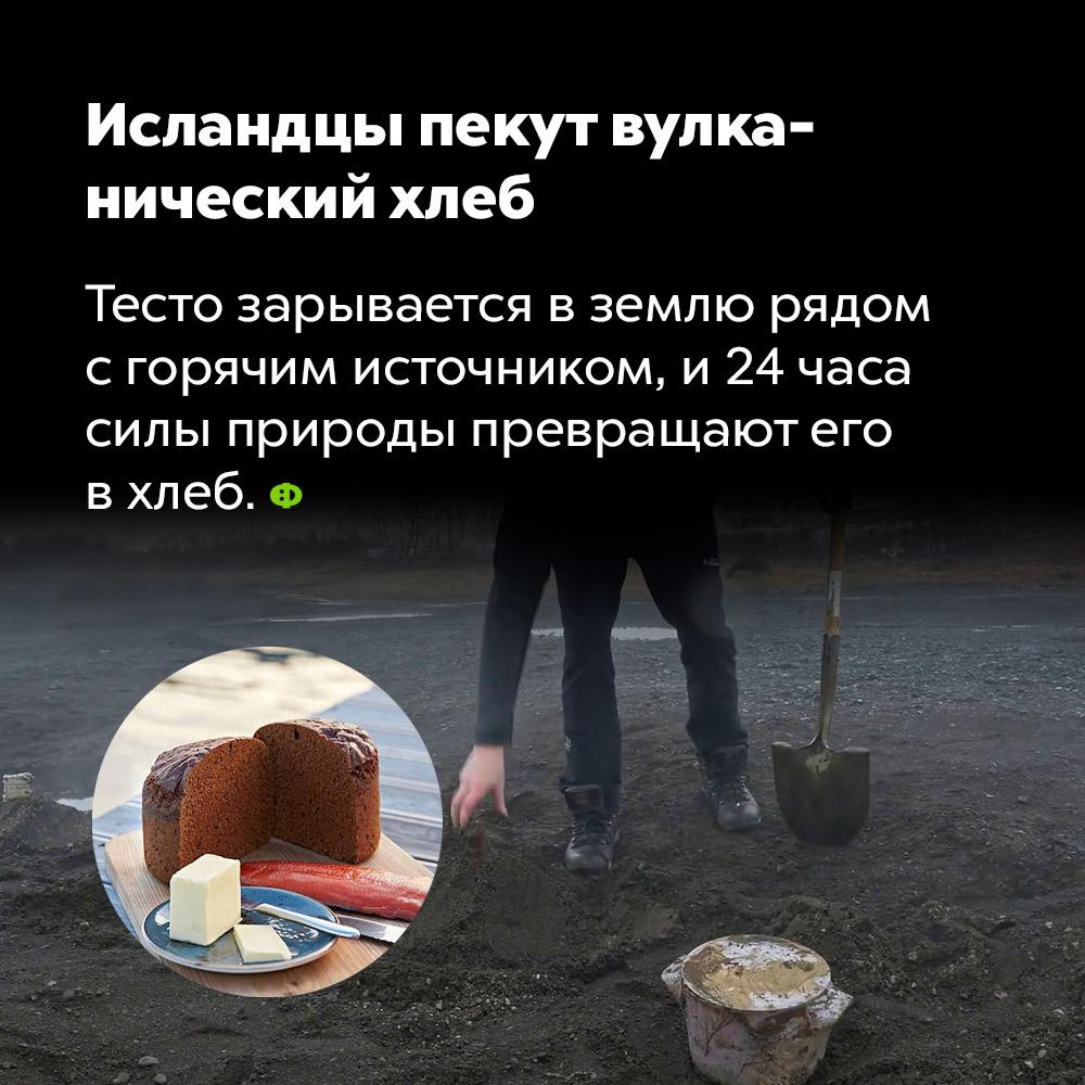 Исландцы пекут вулканический хлеб. Тесто зарывают в землю рядом с горячим источником и через 24 часа силы природы превращают его в хлеб.