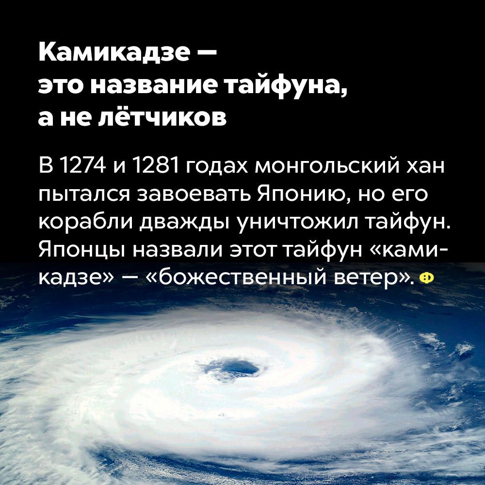 Камикадзе— это название тайфуна, анелётчиков.