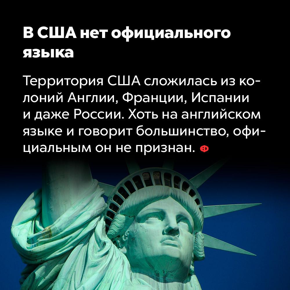 В США нет официального языка. Территория США сложилась из колоний Англии, Франции, Испании и даже России. Хоть на английском языке и говорит большинство, официальным он не признан.