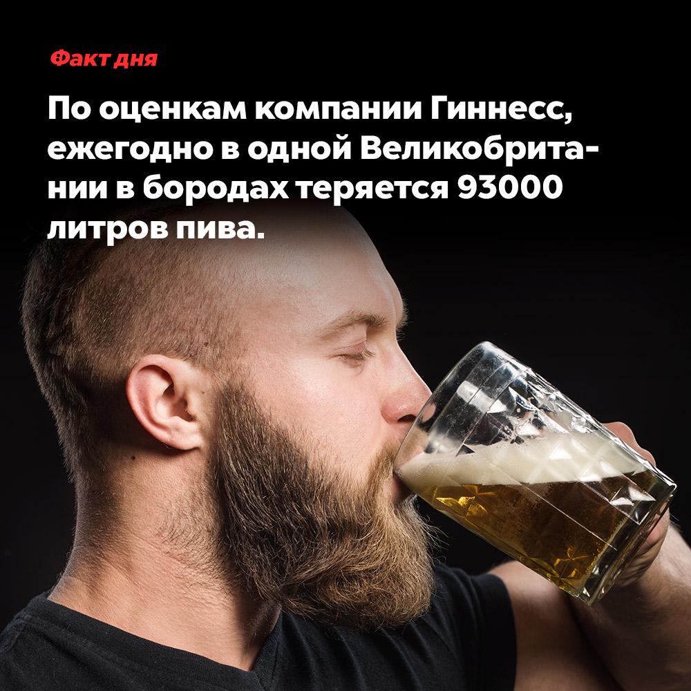 Пооценкам компании Гиннесс, ежегодно водной Великобритании вбородах теряется 93000литров пива. Невероятно, но факт!