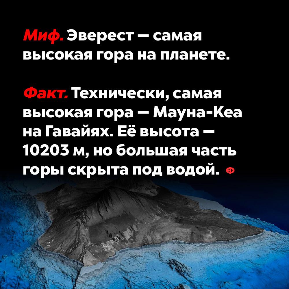 Эверест — самая высокая гора напланете.