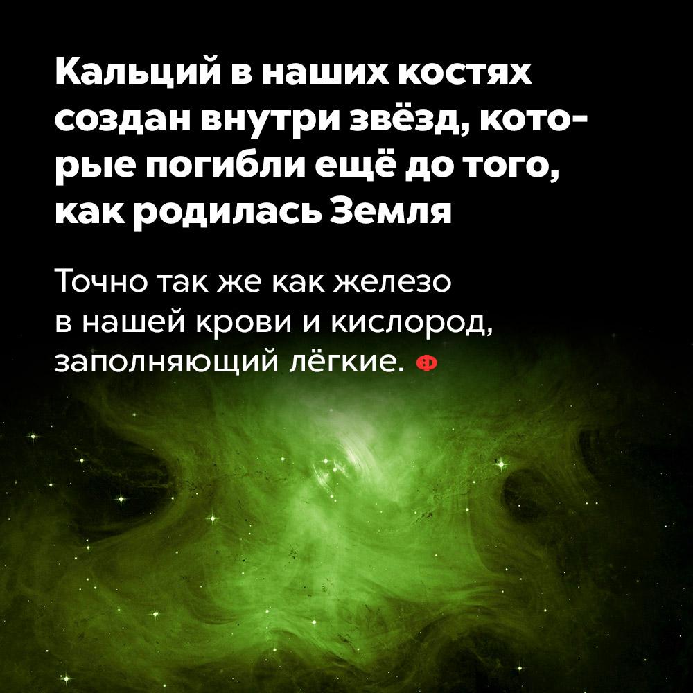 Кальций внаших костях создан внутри звёзд, которые погибли ещё дотого, как родилась Земля. Точно так же, как железо в нашей крови и кислород, заполняющий лёгкие.