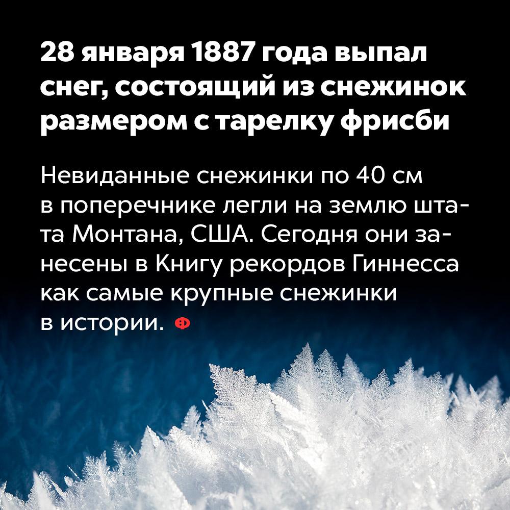 28января 1887года выпал снег, состоящий изснежинок размером старелку фрисби. Невиданные снежинки по 40 см в поперечнике легли на землю штата Монтана, США. Сегодня они занесены в Книгу рекордов Гиннесса как самые крупные снежинки в истории.
