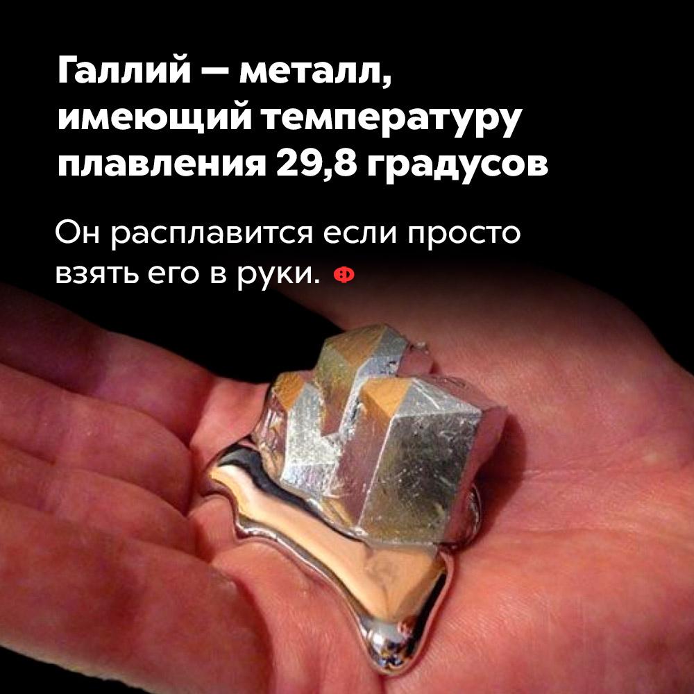 Галлий — металл, имеющий температуру плавления 29,8градусов. Он расплавится, если просто взять его в руки.