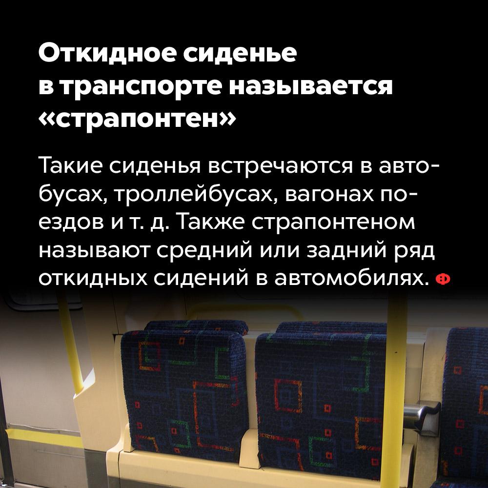 Откидное сиденье втранспорте называется «страпонтен». Такие сиденья встречаются в автобусах, троллейбусах, вагонах поездов и т. д. Также страпонтеном называют средний или задний ряд откидных сидений в автомобилях.