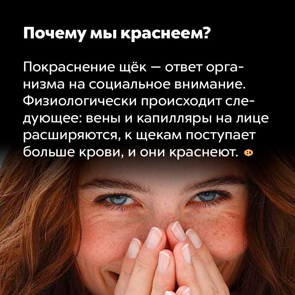 Почему мы краснеем. Покраснение щёк — ответ организма на социальное внимание. Физиологические происходит следующее: вены и капилляры на лице расширяются, к щекам поступает больше крови, и они краснеют.