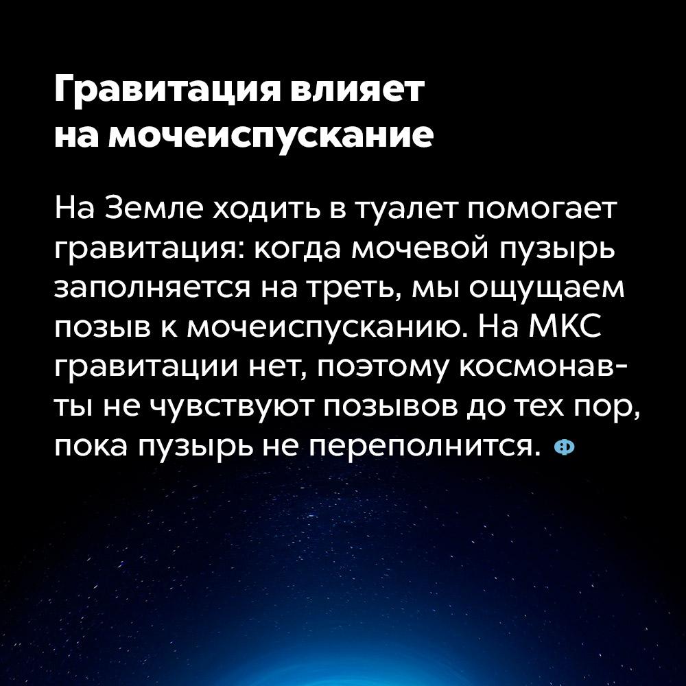 Гравитация влияет намочеиспускание. На Земле ходить в туалет помогает гравитация: когда мочевой пузырь заполняется на треть, мы ощущаем позыв к мочеиспусканию. На МКС гравитации нет, поэтому космонавты не чувствуют позывов до тех пор, пока пузырь не переполнится.