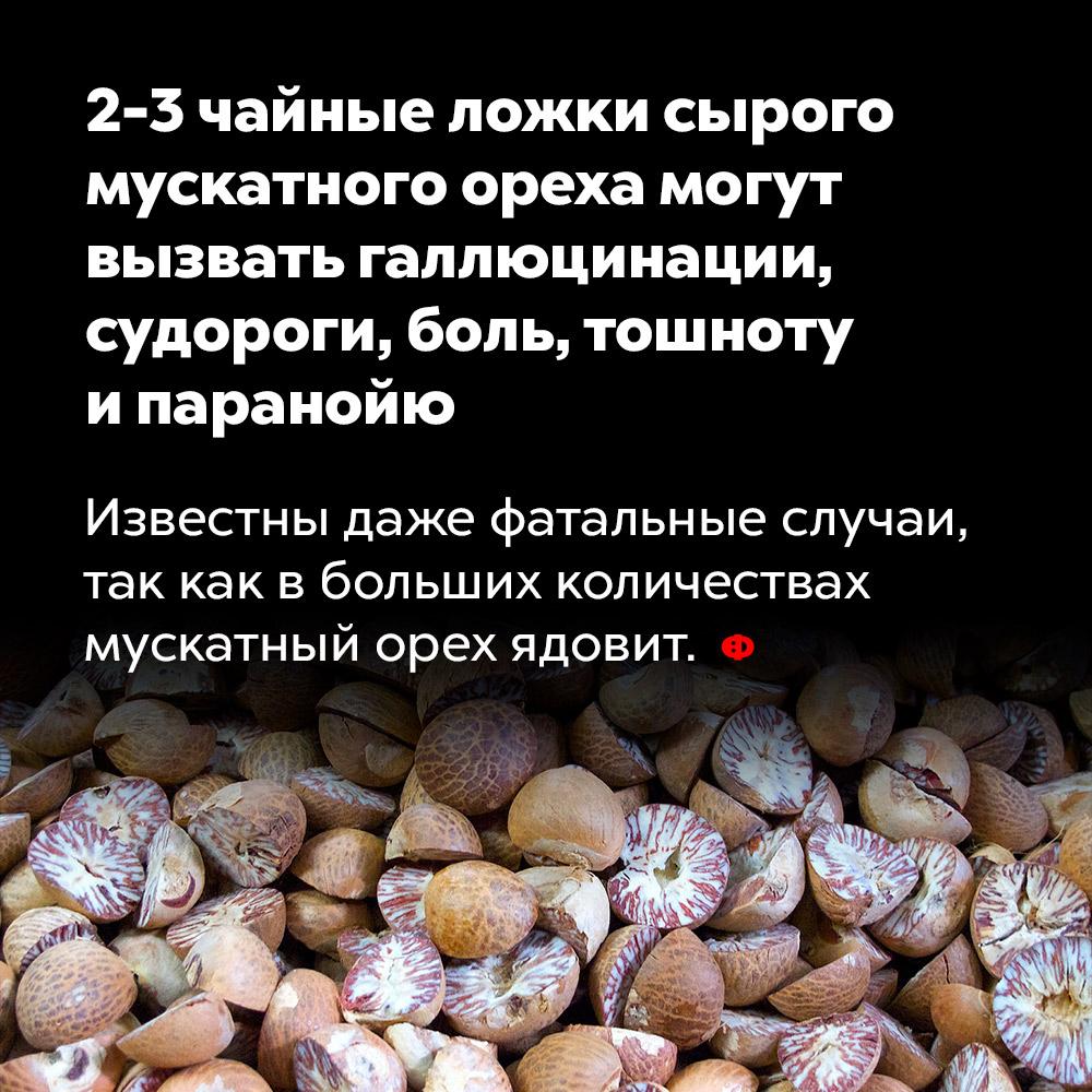 2-3чайные ложки сырого мускатного ореха могут вызвать галлюцинации, судороги, боль, тошноту ипаранойю. Известны даже фатальные случаи, так как в больших количествах мускатный орех ядовит.