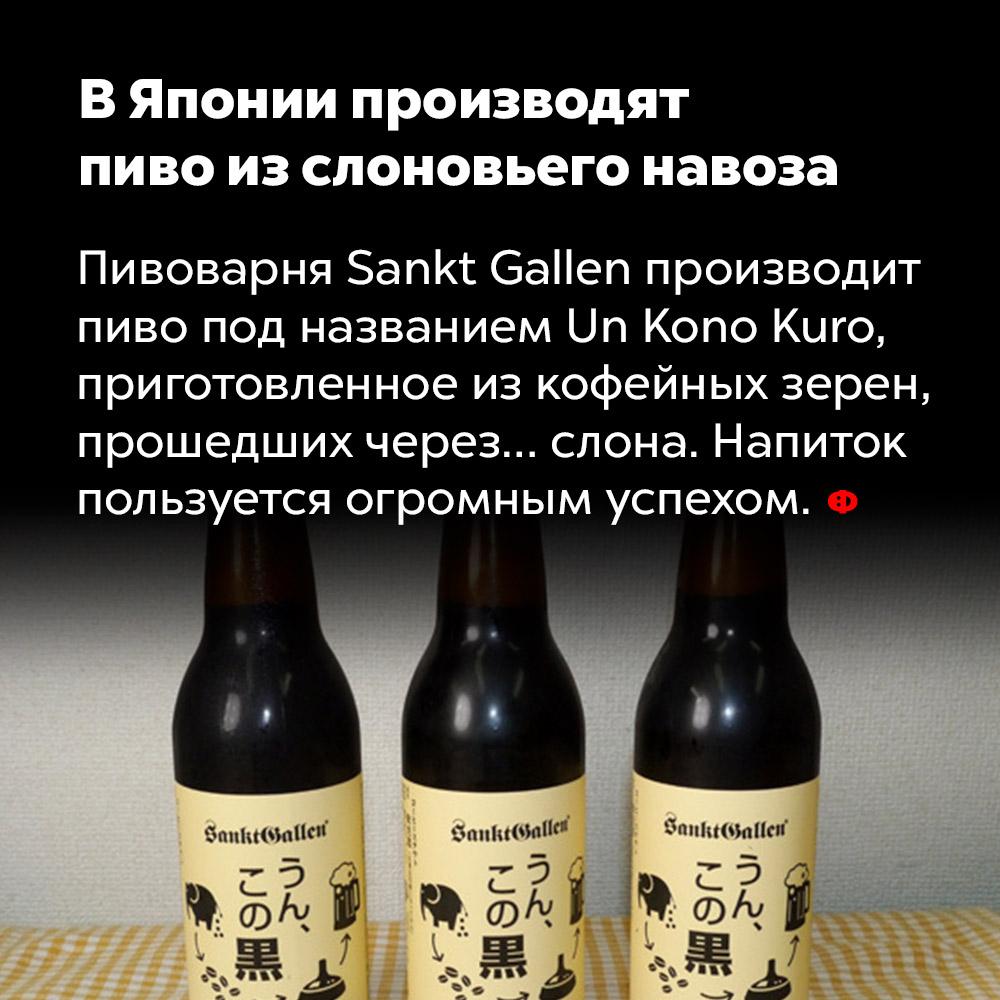 ВЯпонии производят пиво изслоновьего навоза. Пивоварня Sankt Gallen производит пиво под названием Un Kono Kuro, приготовленное из кофейных зёрен, прошедших через… слона. Напиток пользуется огромным успехом.