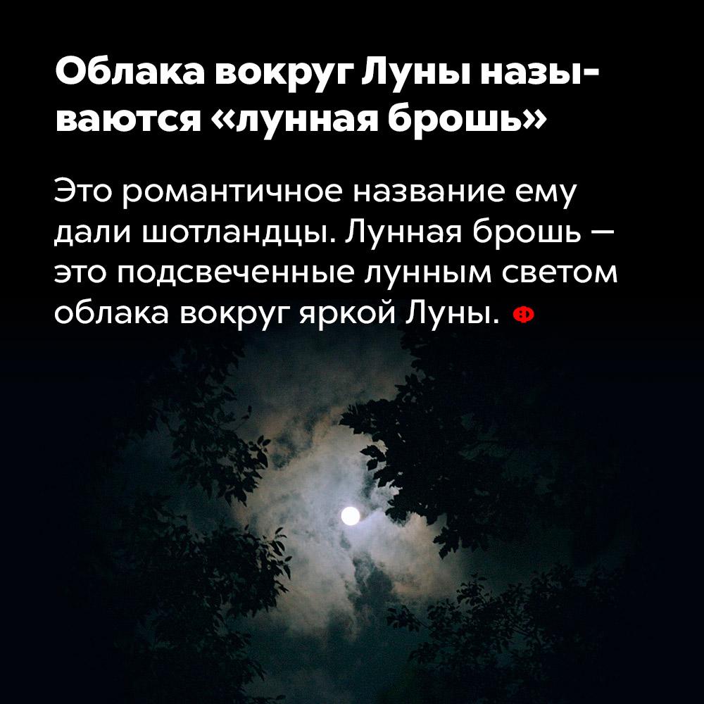 Облака вокруг Луны называются «лунная брошь». Это романтичное название придумали шотландцы. Лунная брошь — это подсвеченные лунным светом облака вокруг яркой Луны.