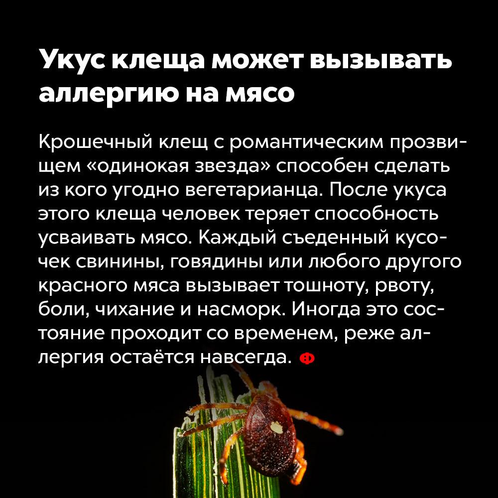 Укус клеща может вызывать аллергию намясо.