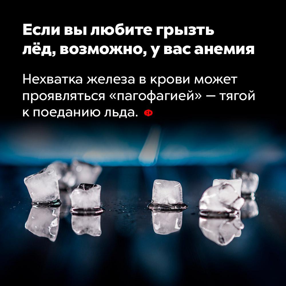 Если вылюбите грызть лёд, возможно, увас анемия. Нехватка железа в крови может проявляться «пагофагией» — тягой к поеданию льда.