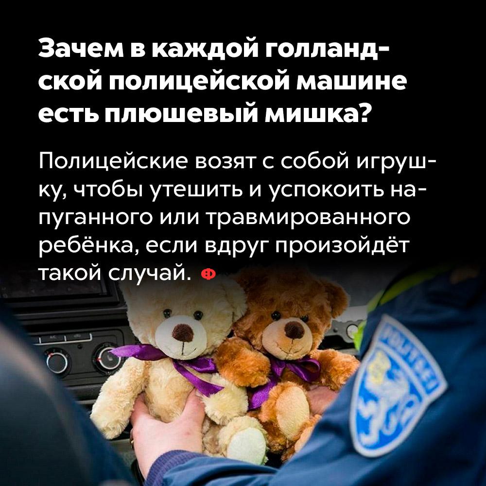 Зачем вкаждой голландской полицейской машине есть плюшевый мишка. Полицейские возят с собой игрушку, чтобы утешить и успокоить напуганного или травмированного ребёнка, если вдруг произойдёт такой случай.
