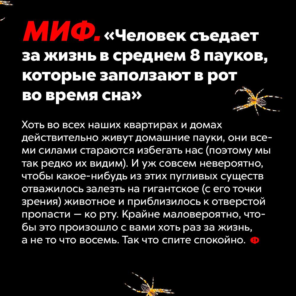 МИФ: «Человек съедает зажизнь всреднем 8пауков, которые заползают врот вовремя сна». Хоть во всех наших квартирах и домах действительно живут домашние пауки, они всеми силами стараются избегать нас (поэтому мы так редко их видим). И уж совсем невероятно, чтобы какое-нибудь из этих пугливых существ отважилось залезть на гигантское (с его точки зрения) животное и приблизилось к отверстой пропасти — ко рту. Крайне маловероятно, чтобы это произошло с вами хоть раз за жизнь, а не то что восемь. Так что спите спокойно.