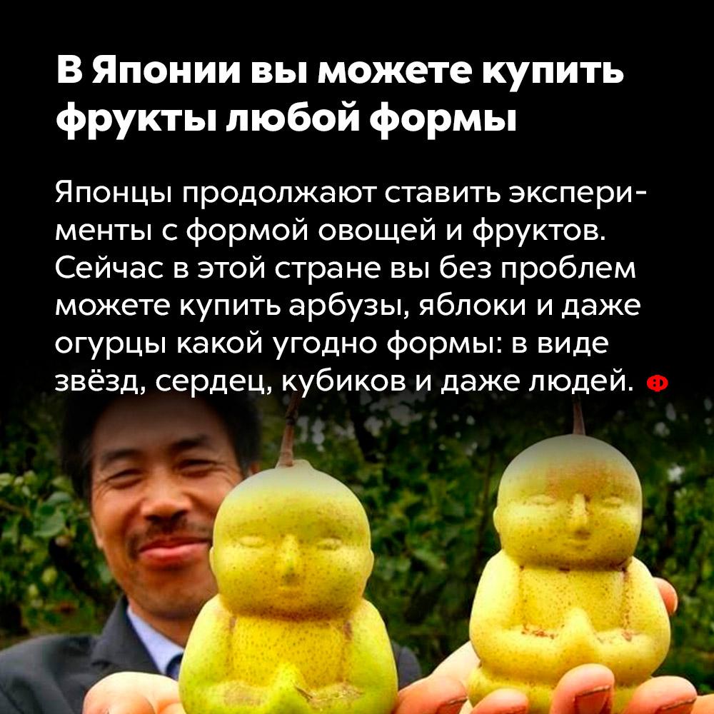 ВЯпонии выможете купить фрукты любой формы. Японцы продолжают ставить эксперименты с формой овощей и фруктов. Сейчас в этой стране вы без проблем можете купить арбузы, яблоки и даже огурцы какой угодно формы: в виде звёзд, сердец, кубиков и даже людей.
