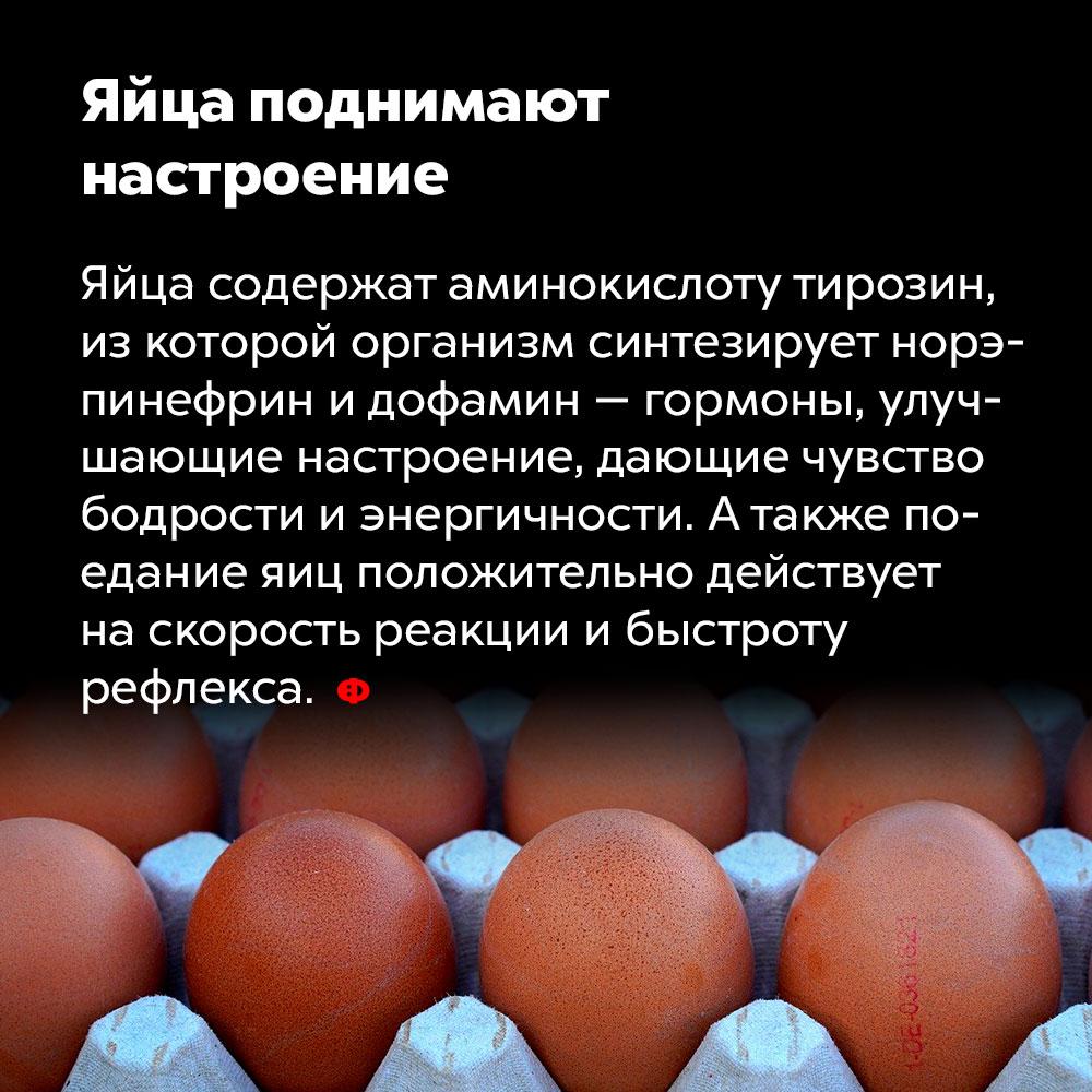 Яйца поднимают настроение. Яйца содержат аминокислоту тирозин, из которой организм синтезирует норэпинефрин и дофамин — гормоны, улучшающие настроение, дающие чувство бодрости и энергичности. А также поедание яиц положительно действует на скорость реакции и быстроту рефлекса.