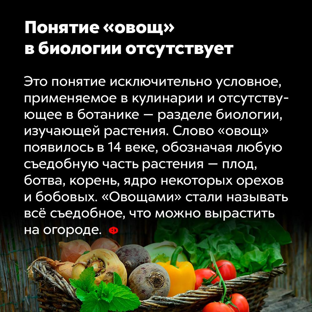 Понятие «овощ» вбиологии отсутствует. Это понятие исключительно условное, применяемое к кулинарии и отсутствующее в ботанике — разделе биологии, изучающим растения. Слово «овощ» появилось в 14 веке, обозначая любую съедобную часть растения — плод, ботва, корень, ядро некоторых орехов и бобовых. «Овощами» стали называть всё съедобное, что можно вырастить на огороде.