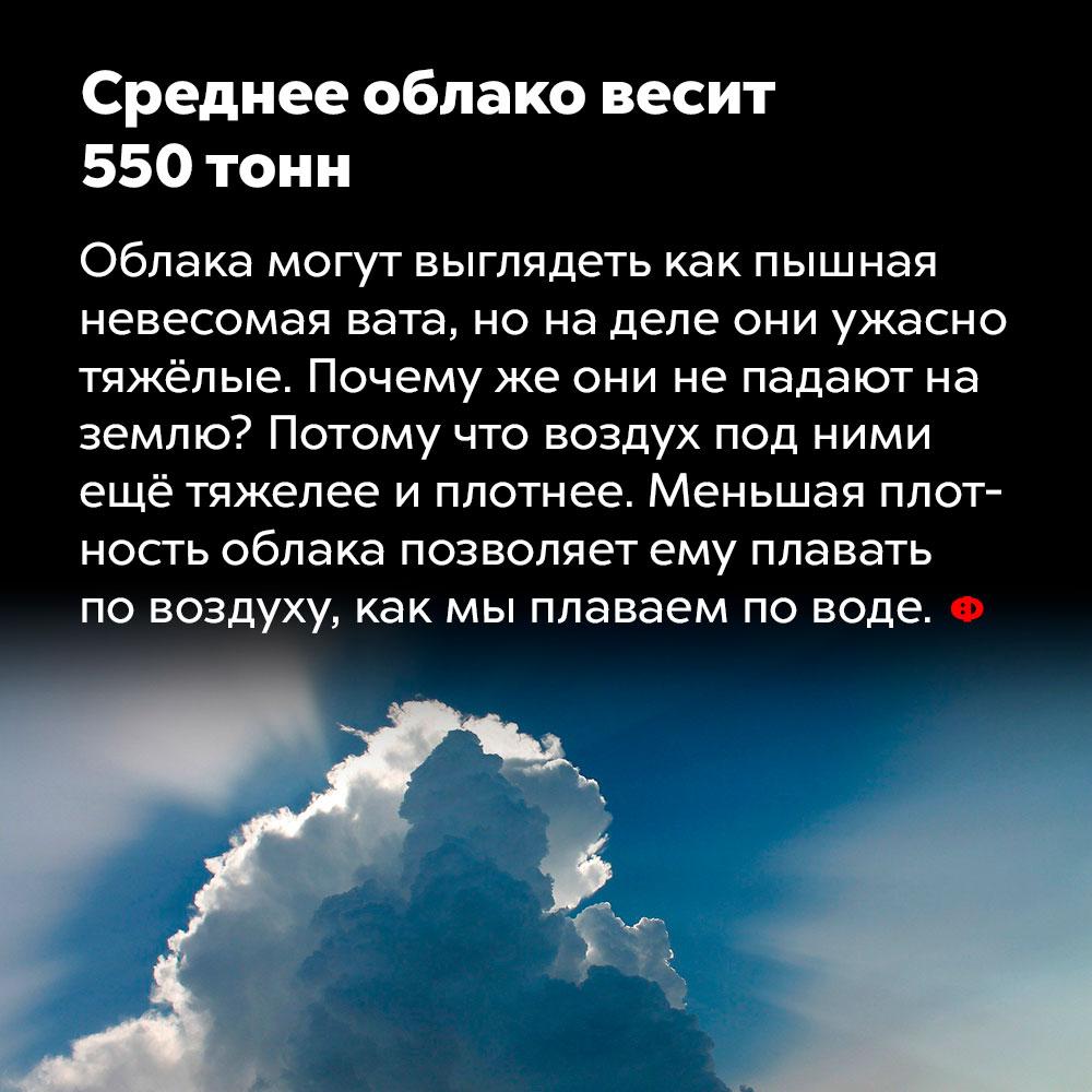 Среднее облако весит 550тонн. Облака могут выглядеть как пышная невесомая вата, но на деле они ужасно тяжёлые. Почему же они не падают на землю? Потому что воздух под ними ещё тяжелее и плотнее. Меньшая плотность облака позволяет ему плавать по воздуху, как мы плаваем по воде.