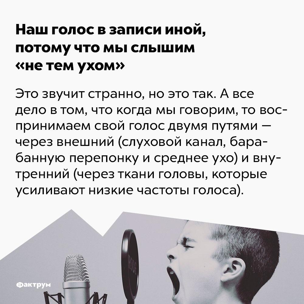 Наш голос взаписи иной, потому что мы слышим «нетем ухом». Это звучит странно, но это так. А всё дело в том, что когда мы говорим, то воспринимаем свой голос двумя путями: внешним (слуховой канал, барабанная перепонка, среднее ухо) и внутренним (через ткани головы, которые усиливают низкие частоты голоса).