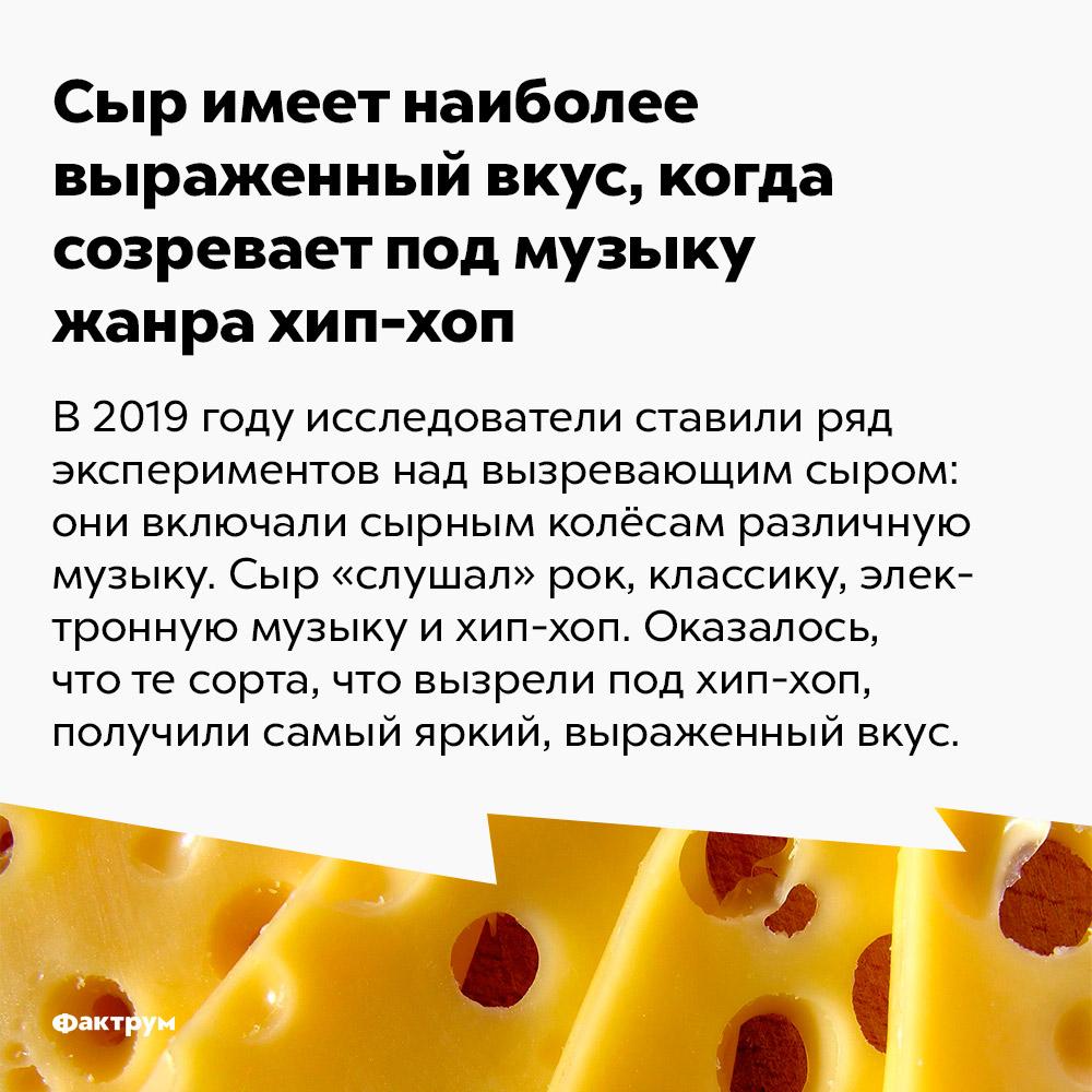 Сыр имеет наиболее выраженный вкус, когда созревает под музыку жанра хип-хоп. В 2019 году исследователи ставили ряд экспериментов над вызревающим сыром: они включали сырным колёсам различную музыку. Сыр «слушал» рок, классику, электронную музыку и хип-хоп. Оказалось, что те сорта, что вызрели под хип-хоп, получили самый яркий, выраженный вкус.