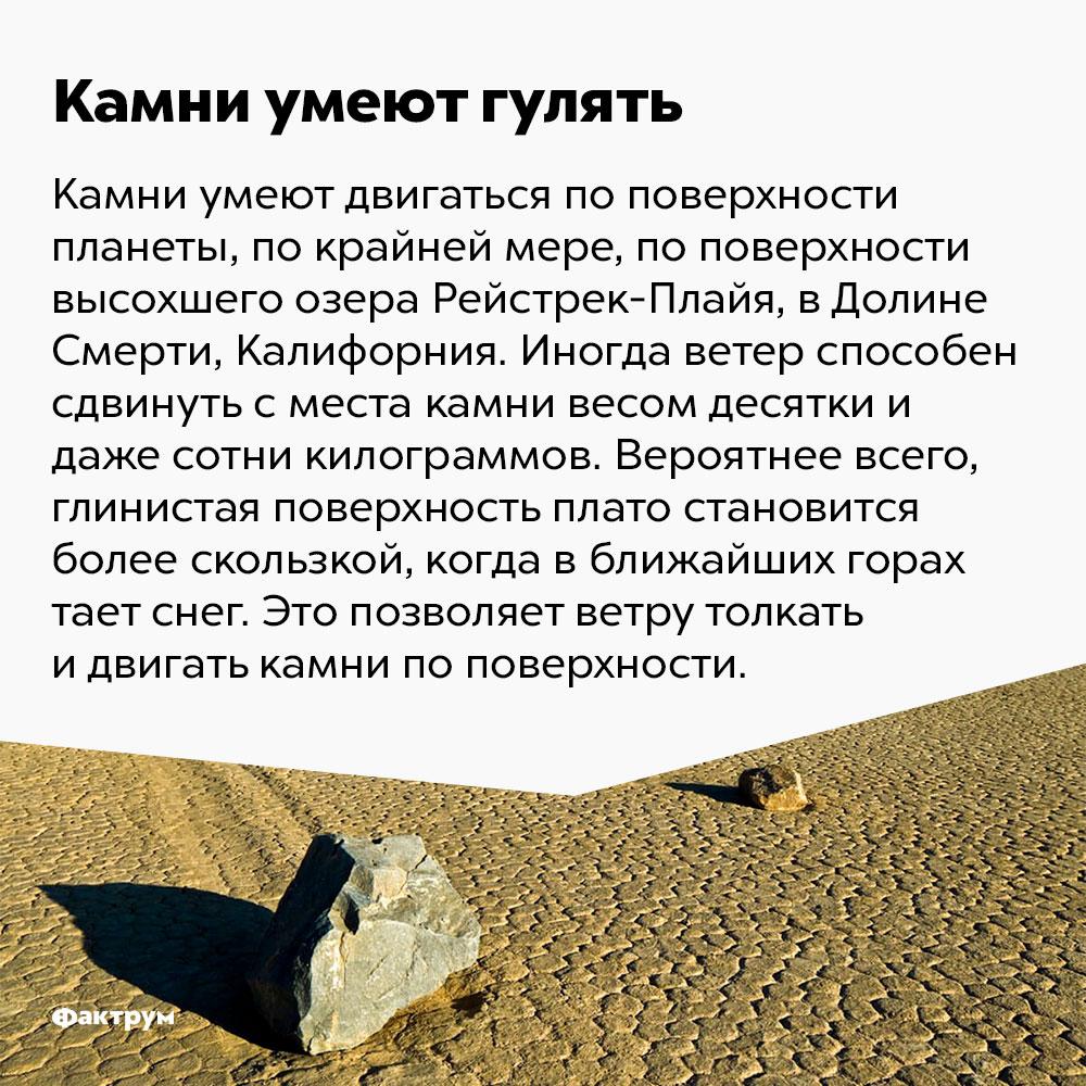 Камни умеют гулять. Камни могут двигаться по поверхности планеты, по крайней мере, по поверхности высохшего озера Рейстрек-Плайя в Долине Смерти, Калифорния. Иногда ветер способен сдвинуть с места камни весом десятки и даже сотни килограммов. Вероятнее всего, глинистая поверхность плато становится более скользкой, когда в ближайших горах идёт снег. Это позволяет ветру толкать и двигать камни по поверхности.
