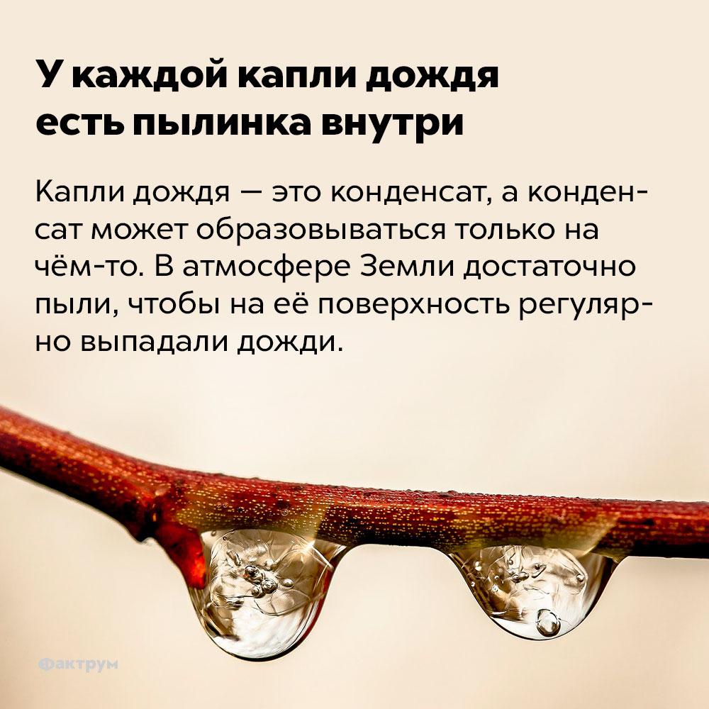 Укаждой капли дождя есть пылинка внутри. Капли дождя — это конденсат, а конденсат может образовываться только на чём-то. В атмосфере Земли достаточно пыли, чтобы на её поверхность регулярно выпадали дожди.