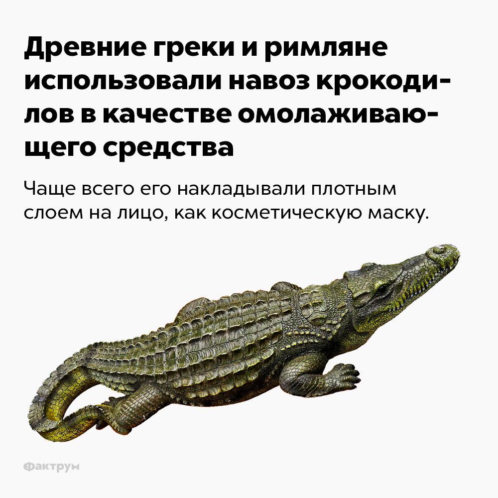Древние греки иримляне использовали навоз крокодилов вкачестве омолаживающего средства.