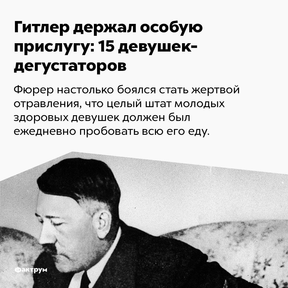 Гитлер держал особую прислугу: 15девушек-дегустаторов. Фюрер настолько боялся стать жертвой отравления, что целый штат молодых здоровых девушек должен был ежедневной пробовать всю его еду.