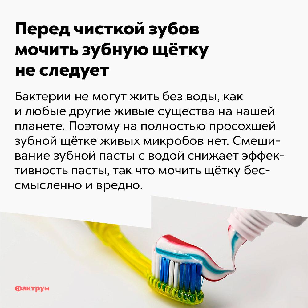 Перед чисткой зубов мочить зубную щётку неследует. Бактерии не могут жить без воды, как и любые другие живые существа на нашей планете. Поэтому на полностью просохшей зубной щётке бактерий нет. Смешивание зубной пасты с водой снижает эффективность пасты, так что мочить щётку бессмысленно и вредно.
