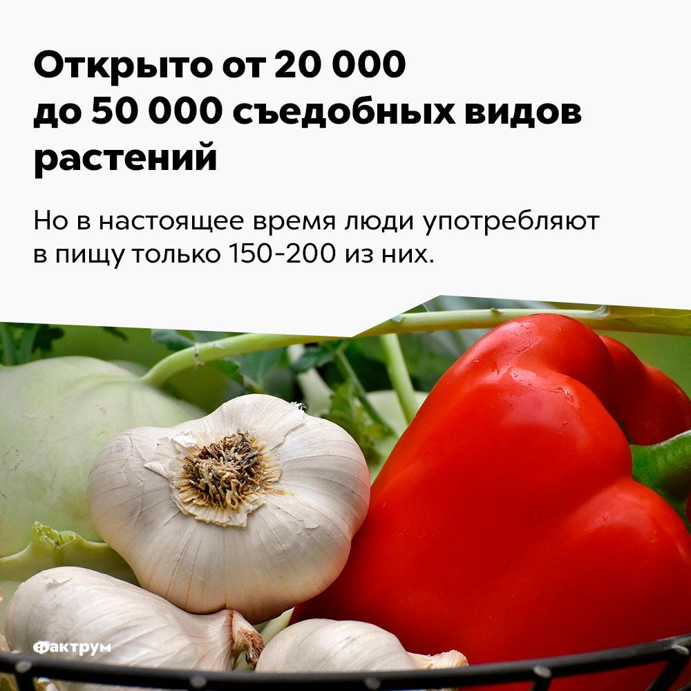 Открыто от20000 до50000 съедобных видов растений. Но в настоящее время люди употребляют в пищу только 150-200 из них.