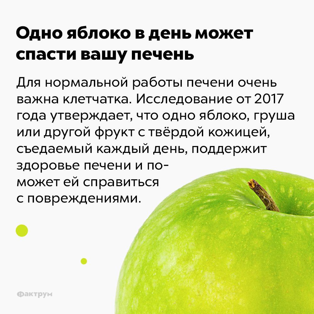 Одно яблоко вдень может спасти вашу печень. Для нормальной работы печени очень важна клетчатка. Исследование от 2017 года утверждает, что одно яблоко, груша или другой фрукт с твёрдой кожицей, съедаемый каждый день, поддержит здоровье печени и поможет ей справиться с повреждениями.