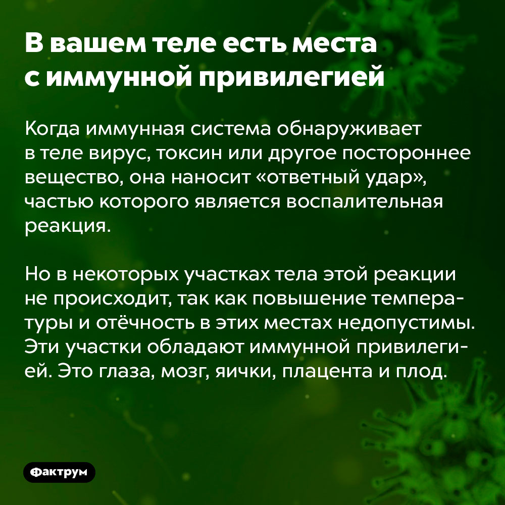 Ввашем теле есть места симмунной привилегией. Когда иммунная система обнаруживает в теле вирус, токсин или другое постороннее вещество, она наносит «ответный удар», частью которого является воспалительная реакция.  Но в некоторых участках тела этой реакции не происходит, так как повышение температуры и отёчность в этих местах недопустимы. Эти участки обладают иммунной привилегией. Это глаза, мозг, яички, плацента и плод.