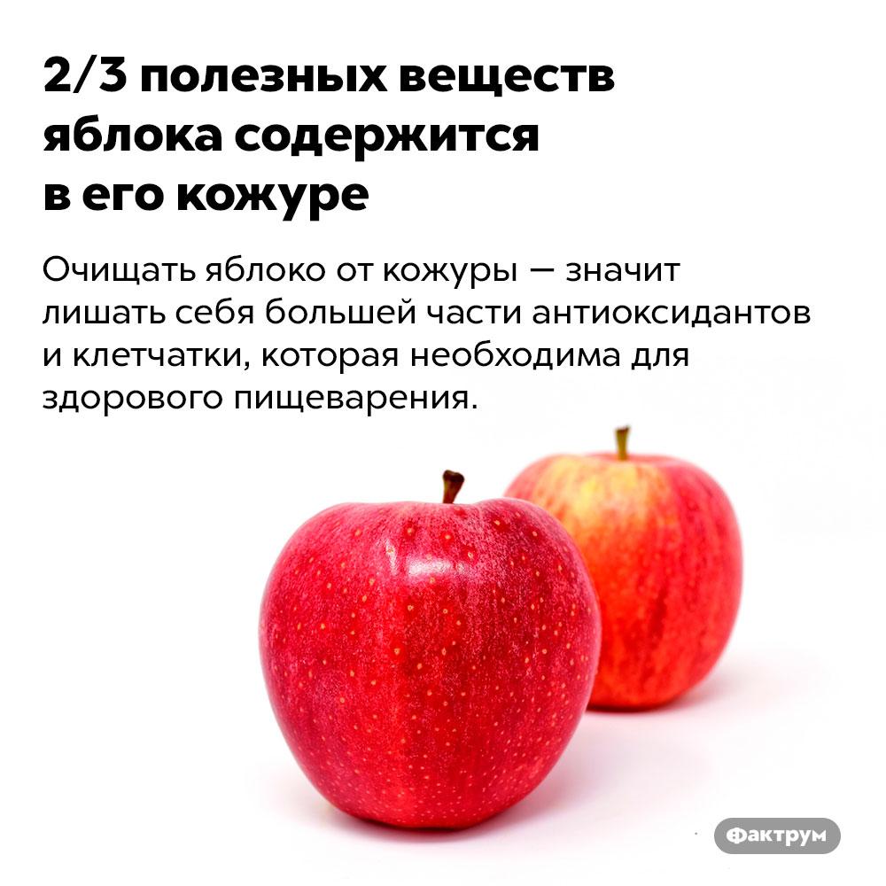 2/3полезных веществ яблока содержится вего кожуре. Очищать яблоко от кожуры — значит лишать себя большей части антиоксидантов и клетчатки, которая необходима для здорового пищеварения.