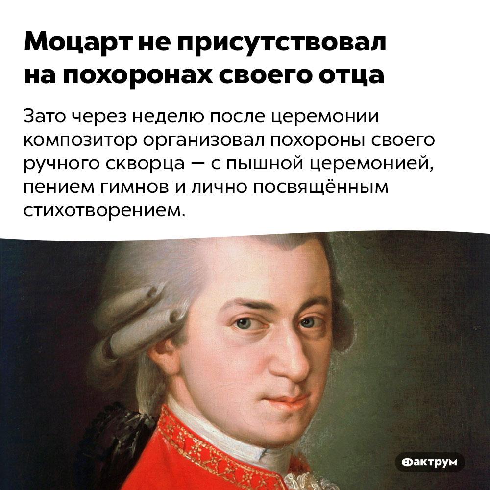 Моцарт неприсутствовал напохоронах своего отца. Зато через неделю после церемонии композитор организовал похороны своего ручного скворца — с пышной церемонией, пением гимнов и лично посвящённым стихотворением.