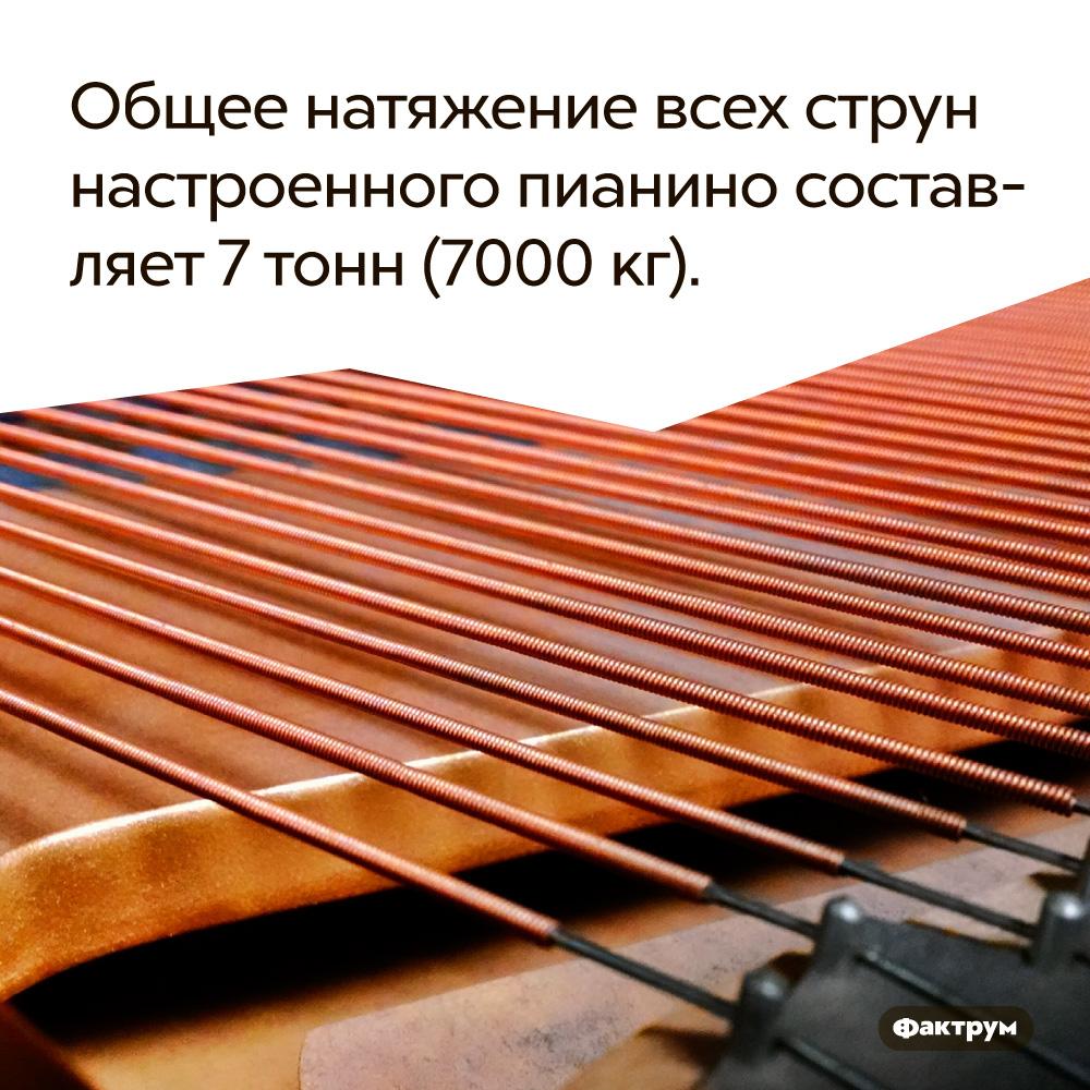 Общее натяжение всех струн настроенного пианино составляет 7тонн (7000кг). Струны прячутся внутри инструмента.