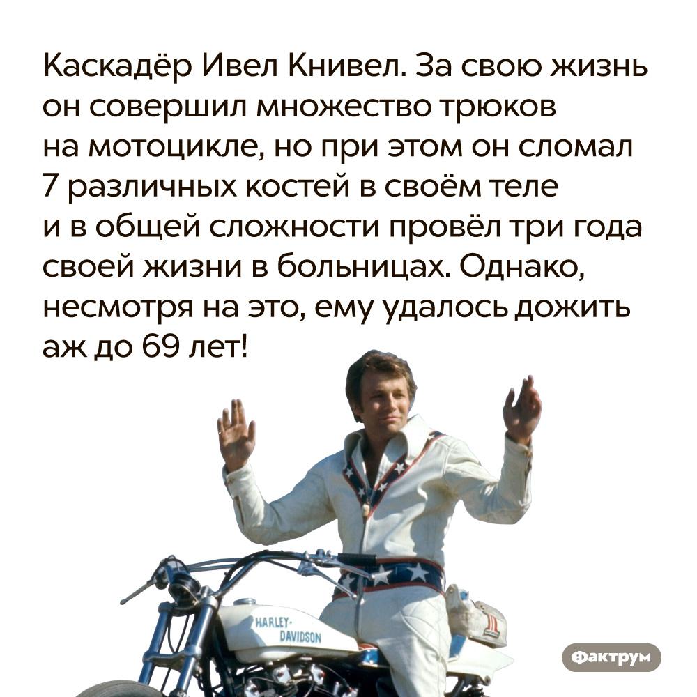 Каскадёр Ивел Книвел совершил множество трюков на мотоцикле, но при этом он сломал 37 различных костей. ...при этом он сломал 37 различных костей в своём теле и в общей сложности провёл три года своей жизни в больницах. Однако, несмотря на это, ему удалось дожить аж до 69 лет!