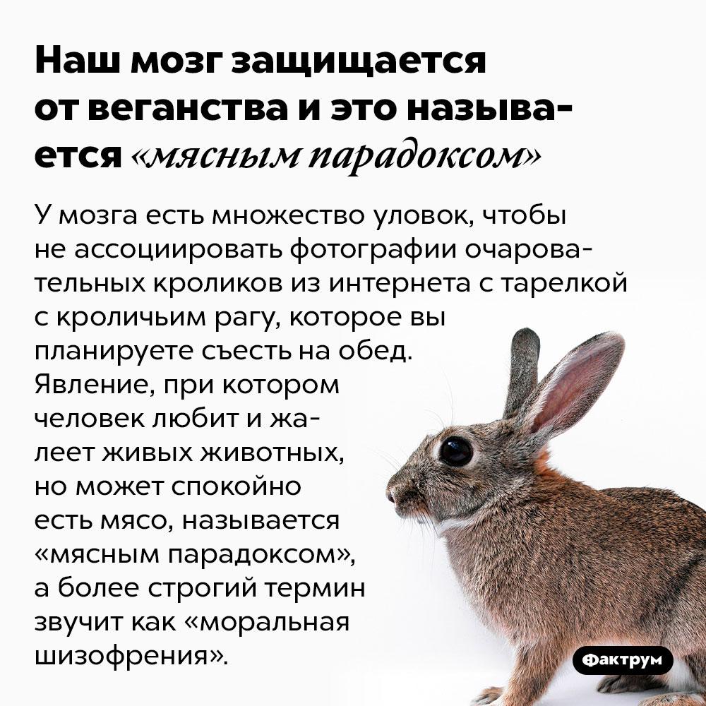 Наш мозг защищается отвеганства иэто называется «мясным парадоксом». У мозга есть множество уловок, чтобы не ассоциировать фотографии очаровательных кроликов из интернета с тарелкой с кроличьим рагу, которое вы планируете съесть на обед. Явление, при котором человек любит и жалеет живых животных, но может спокойно есть мясо, называется «мясным парадоксом», а более строгий термин звучит как «моральная шизофрения».