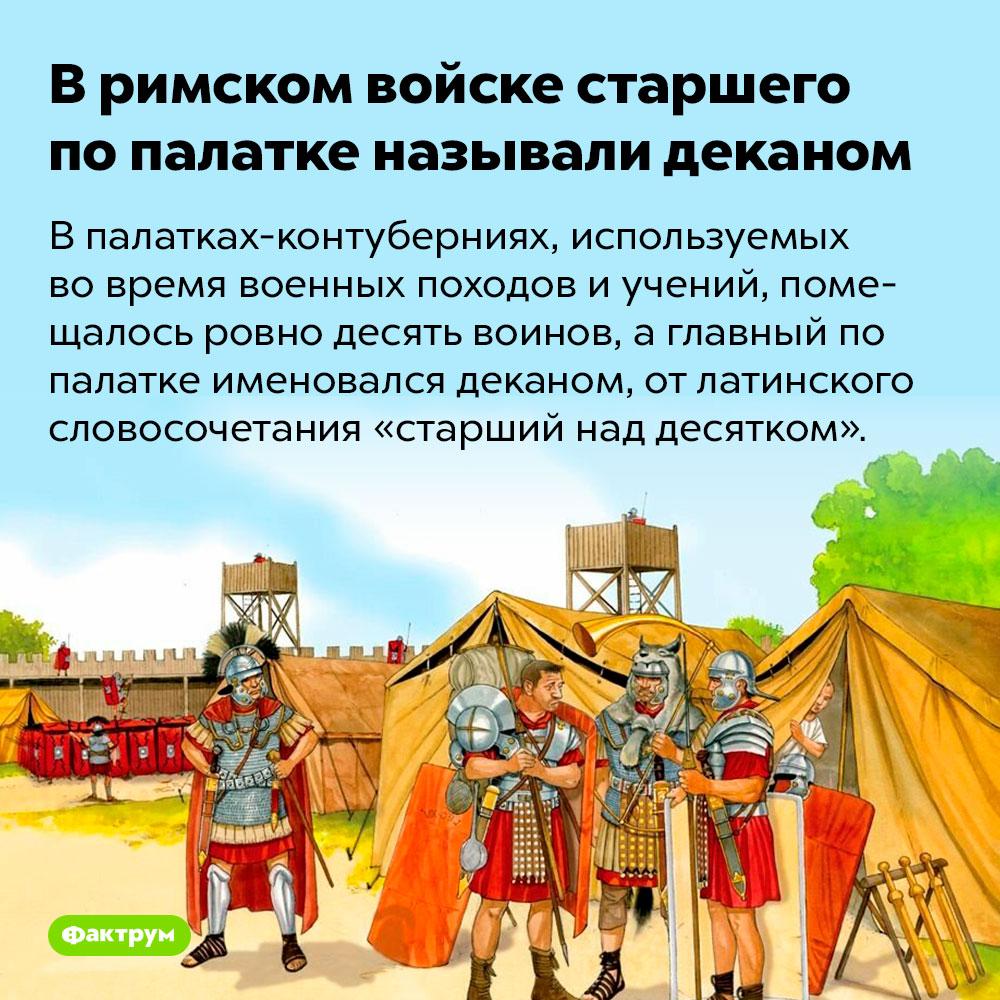 Вримском войске старшего попалатке называли деканом. В палатках-контуберниях, используемых во время военных походов и учений, помещалось ровно десять воинов, а главный по палатке именовался деканом, от латинского словосочетания «старший над десятком».