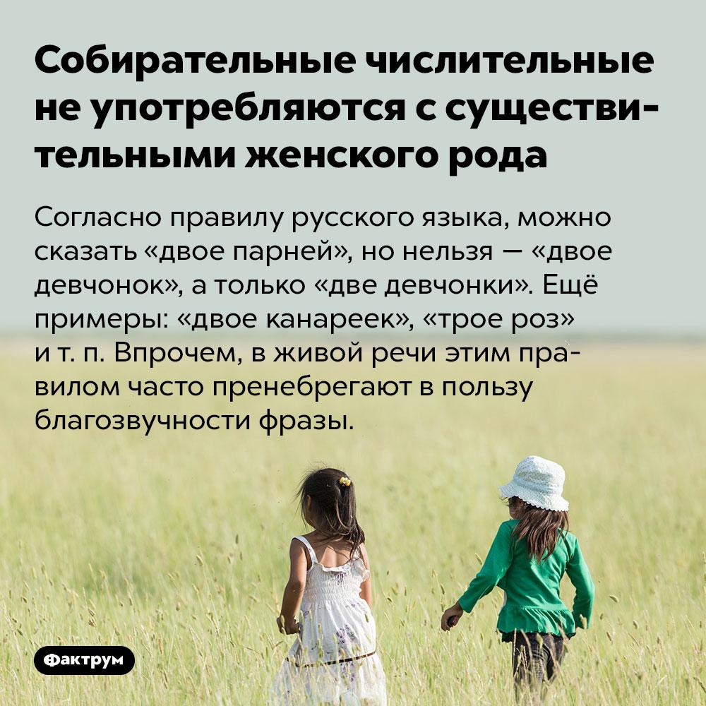 Собирательные числительные неупотребляются ссуществительными женского рода. Согласно правилу русского языка, можно сказать «двое парней», но нельзя — «двое девчонок», а только «две девчонки». Ещё примеры: «двое канареек», «трое роз» и т. п. Впрочем, в живой речи этим правилом часто пренебрегают в пользу благозвучности фразы.