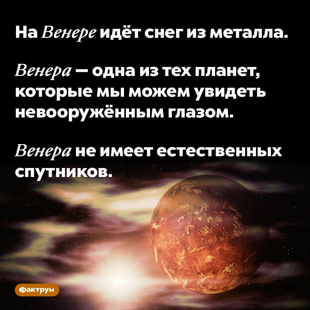НаВенере идёт снег изметалла. Венера — одна из тех планет, которые мы можем увидеть невооружённым глазом.  Венера не имеет естественных спутников.