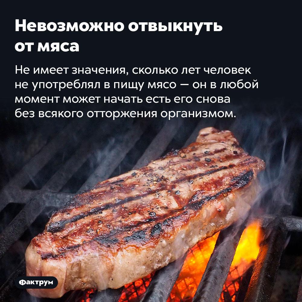 Невозможно отвыкнуть отмяса. Не имеет значения, сколько лет человек не употреблял в пищу мясо — он в любой момент может начать есть его снова без всякого отторжения организмом.