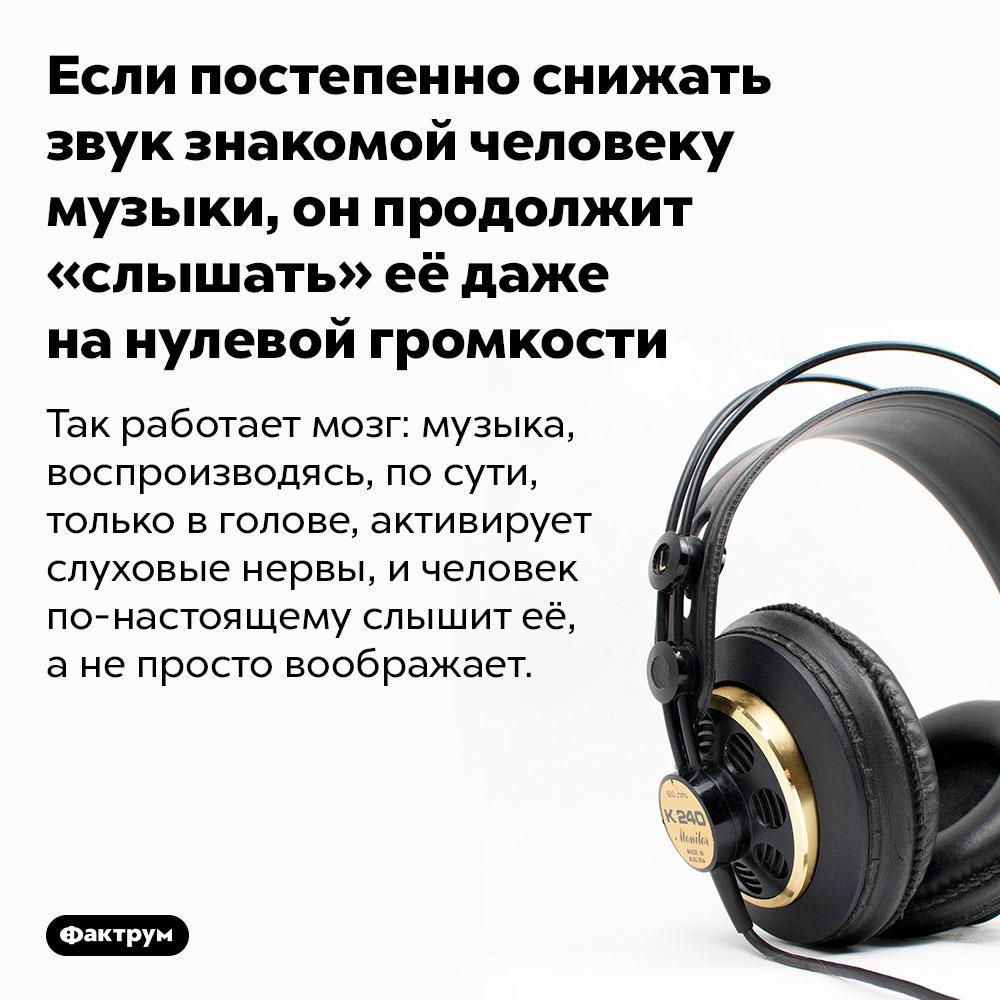 Если постепенно снижать звук знакомой человеку музыки, онпродолжит «слышать» её даже нанулевой громкости. Так работает мозг: музыка, воспроизводясь, по сути, только в голове, активирует слуховые нервы, и человек по-настоящему слышит её, а не просто воображает.