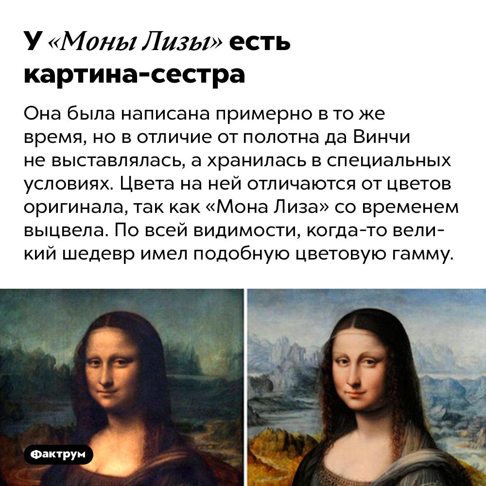 У«Моны Лизы» есть картина-сестра. Она была написана примерно в то же время, но в отличие от полотна да Винчи не выставлялась, а хранилась в специальных условиях. Цвета на ней отличаются от цветов оригинала, так как «Мона Лиза» со временем выцвела. По всей видимости, когда-то великий шедевр имел подобную цветовую гамму.