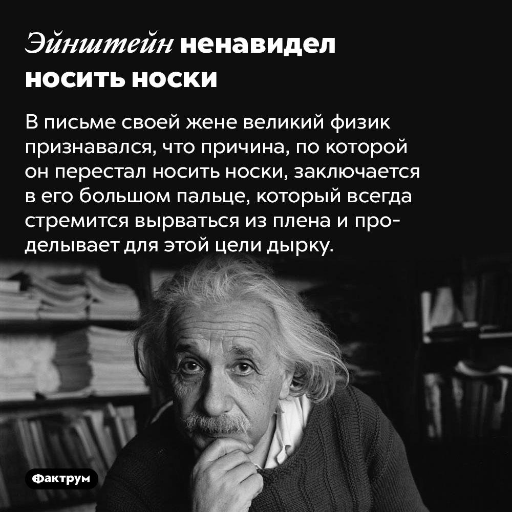 Эйнштейн ненавидел носить носки. В письме своей жене великий физик признавался, что причина, по которой он перестал носить носки, заключается в его большом пальце, который всегда стремится вырваться из плена и проделывает для этой цели дырку.