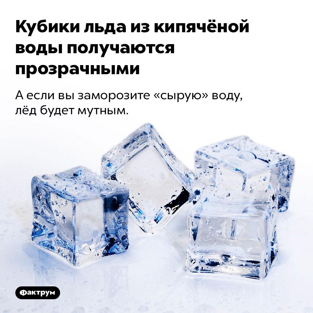 Кубики льда изкипячёной воды получаются прозрачными. А если вы заморозите «сырую» воду, лёд будет мутным.