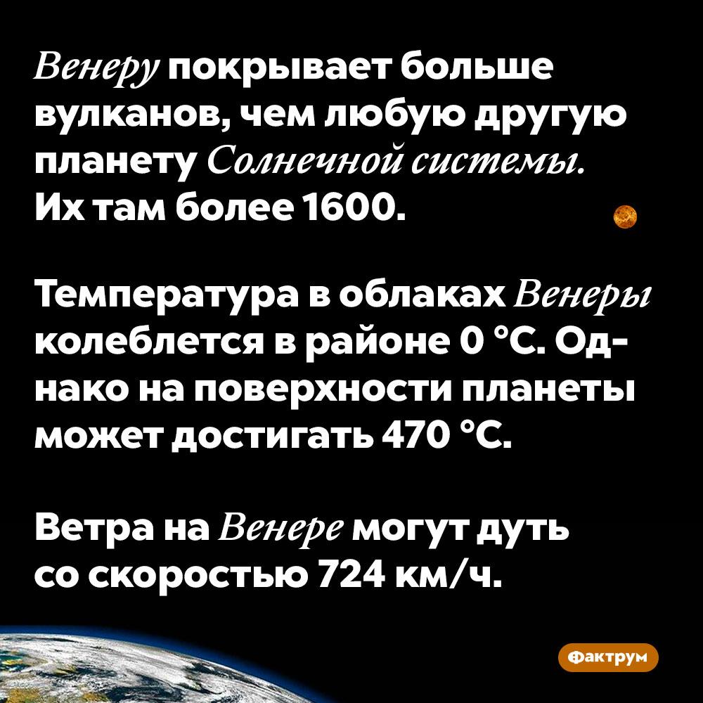 Венеру покрывает больше вулканов, чем любую другую планету Солнечной системы. Их там более 1600. Температура в облаках Венеры колеблется в районе 0 °C. Однако на поверхности планеты может достигать 470 °C.  Ветра на Венере могут дуть со скоростью 724 км/ч.