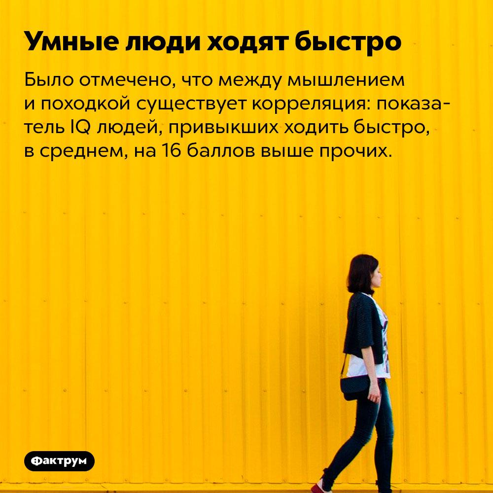 Умные люди ходят быстро. Было отмечено, что между мышлением и походкой существует корреляция: показатель IQ людей, привыкших ходить быстро, в среднем, на 16 баллов выше прочих.