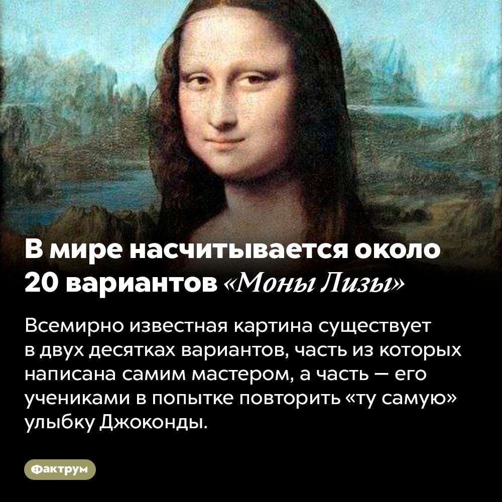 Вмире насчитывается около 20вариантов «Моны Лизы». Всемирно известная картина существует в двух десятках вариантов, часть из которых написана самим мастером, а часть — его учениками в попытке повторить «ту самую» улыбку Джоконды.